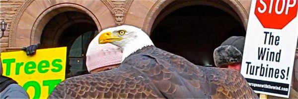 Eagle protest